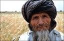 afghan_afp466b