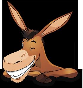 about_donkey